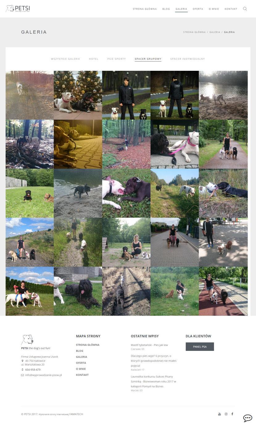 Petsi - galeria zdjęć